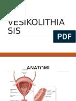 Vesicolithiasis BSH