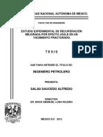 ciclo de vida de un yacimiento.pdf