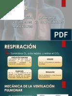 Ventilación Pulmonar , Volúmenes y Capacidades Musculares