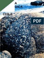 Libro Mapudungun Fernando Zuniga