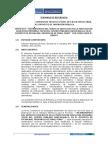 TDR_PUNO_P005.pdf