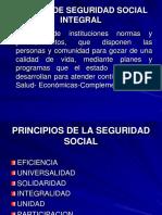Sistema de Seguridad Social Integral v2 (1)