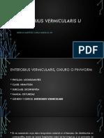 Enterobius Vermicularis u Oxiuro