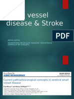 small vessel disease and stroke-gofir_2.ppt