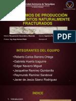 Mecanismos de Produccion en YNF