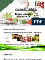 Fermentación de Vegetales