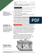 receptoressensoriales-160801044811.pdf