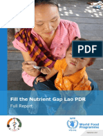ENG_Fill the Nutrient Gap Report Lao PDR_final