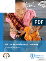 Lao PDR Fill the Nutrient Gap Analysis