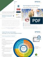 DFGE Flyer Lösungen 2017