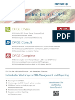 DFGE-CDP-3 Stufen Services 2017