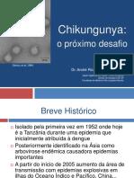 Chikungunya 2014.Aula Andre