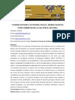 Fecastro_fernandez_ponencia_redcom_2012TERRENOS de LUCHA POR EL SENTIDO