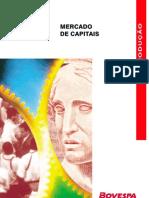 Bovespa - Introdução ao Mercado de Capitais - 38pg