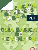prevencion de riesgos GUIABASICA.pdf