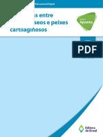 Pac7 Guia Didatico Oed 4 Diferencas Entre Peixes