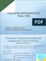 Evaluación Morfosintáctica