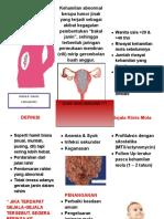 leaflet Mola hidatidosa