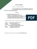 Test de Evaluare Sumativa III