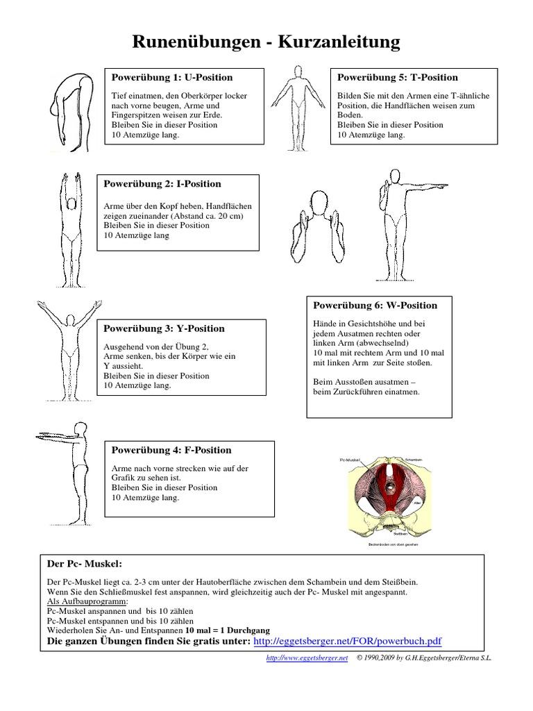 Fein Muskel Charts Zeitgenössisch - Menschliche Anatomie Bilder ...