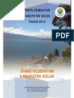 1303_Sumbar_Kab_Solok_2015.pdf