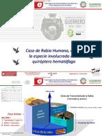 7_Caso_Encefalitis_Rabica_Humana_SESA_GRO.pdf