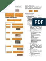 Resumen Ejecutivo - Evaluacion y Reparacion de Las Estructuras