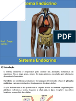 Aula Sistema Endocrino