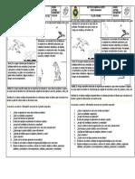 SEPTIMO ORGANIZACIÓN DE LOS SERES VIVOS EN LOS ECOSISTEMAS.docx