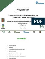 2013 05 10 PresentacionProyecto GEF