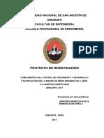 tesis-ACTUAL-13-9-17-1