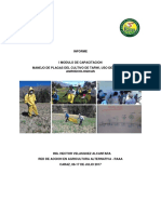 Produccion organica de tarwi (Lupinus mutabilis) modulo I