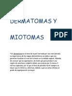 dermatomatomas- reflejos.doc