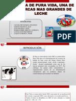352309468-Leche-Pura-Vidaa-GPO-1.pdf