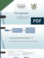 Oncogénesis