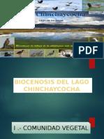 ecologia-diapositivas