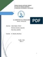 Informe Psicologia Final