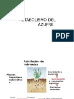 312581364 Metabolismo de Azufre Clase