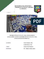 Distribución de Una Planta Para Congelar Iqf en Congeladores Continuos