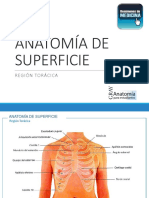 ANATOMÍA DE SUPERFICIE.pdf