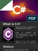 SAP Programming Language