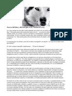 Los dos lobos.pdf