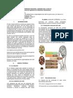 Determinación de la calidad física y organoléptica del café en grano seco y en taza en la Cooperativa Agraria Cafetalera Divisoria Ltda.