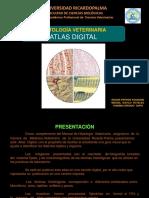 HISTO VET ATLAS DIGITAL VERSION 4.pdf