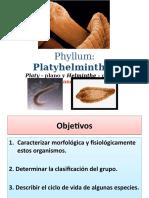 UNIDAD II. Platyhelminthes