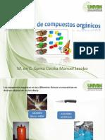 Clasf_de_compuestos_organicos.ppt