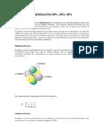 HIBRIDACION SP1