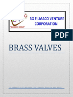 BG Filmaco Valves