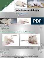 In-Vivo Brain-distribution Study in Rats