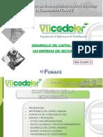 Desarrollo_de_Capital_Humano.pdf